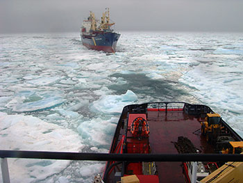 Photo of an icebreaker assisting a ship stuck in the ice