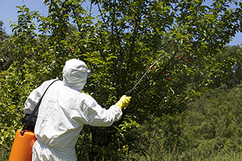 Photo of person wearing protective gear while applying pesticide