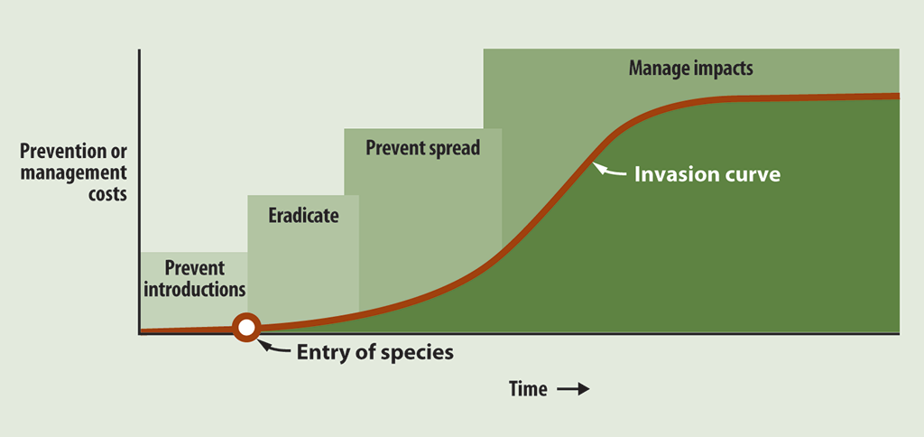 Chart showing that preventing the introduction of aquatic invasive species costs less than managing established species