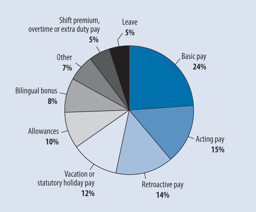 Pie chart showing the elements of employee pay for which errors were found
